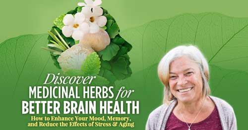Virtual Event: Discovering Medicinal Herbs for Better Brain Health with Mary Bove @ The Shift Network