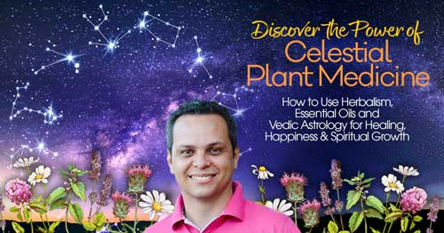 Virtual Event: Discover the Power of Celestial Plant Medicine with Arjun Das @ The Shift Network