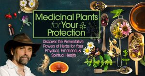 Medicinal Plants for Your Protection with David Crow @ The Shift Network